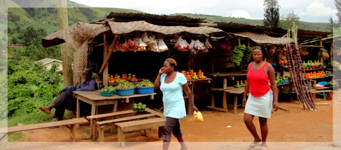 Uganda | Global Health Fellows